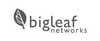 Bigleaf Networks Logo